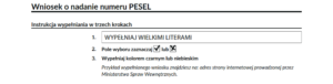 Legal basis for a PESEL number: instructions for completion in three steps